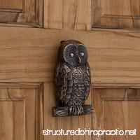 Casa Hardware Brass Owl Door Knocker in Antique Brass Finish - B072MVV5BD