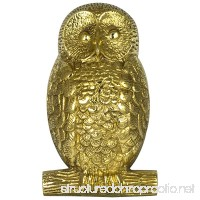 OWL solid brass Door Knocker Hoot - B00NXWZVVA