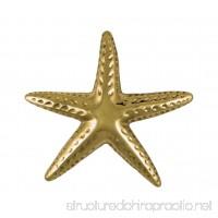 Starfish Door Knocker - Brass (Standard Size) - B015U9W69S